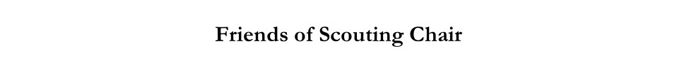 Friends of Scouting Chair